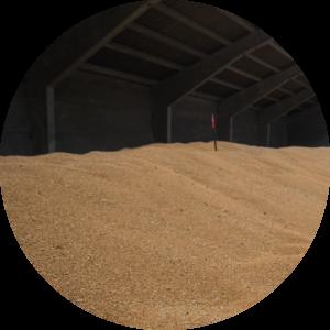 stockage à plat flat Javelot grain hangar