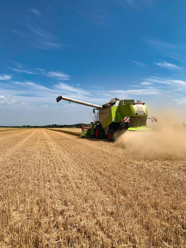 Moisson champs moissonneuse grain